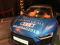 Stedek supports Midlands Audi Charity Ball
